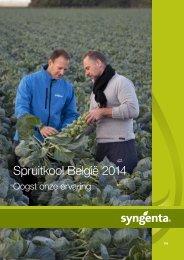 Spruitkool België 2013 - Syngenta