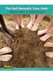 The Soil Beneath Your Feet- Where Does It Come From?