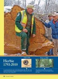 Herbie - Yarmouth Community Page