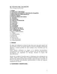 1 EL CULTIVO DEL CALABACÍN The courgette growing 1. Origen 2 ...