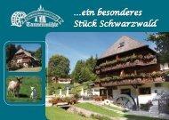 …ein besonderes Stück Schwarzwald - Tannenmühle