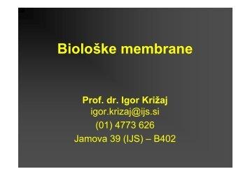 Uvod BM.pdf - Department of Biochemistry and Molecular Biology - IJS