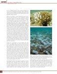 Gleason, D.F. - Gray's Reef National Marine Sanctuary - NOAA - Page 3