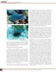 Gleason, D.F. - Gray's Reef National Marine Sanctuary - NOAA - Page 5