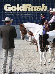 2006 European Paint Horse Champions - SPHA