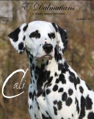 Download Complete Sept Edition in PDF - E Dalmatians