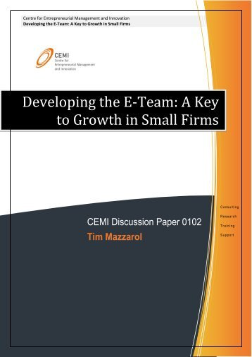 Developing the E-Team: A Key to Growth in Small Firms - CEMI