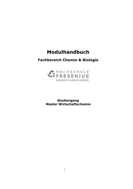 Modulhandbuch Master Wirtschaftschemie