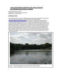 2007 Cedar Lake Assessment Report - Hillsborough County & City ...