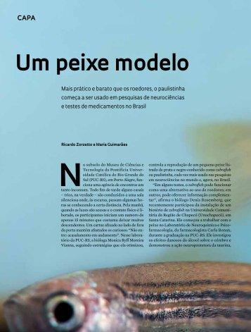 Um peixe modelo - Revista Pesquisa FAPESP