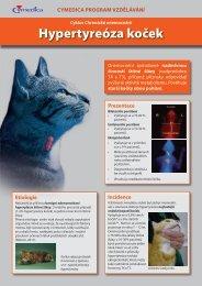 Hypertyreóza koček - NetNews