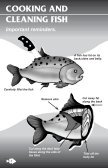 2008 Michigan faMily fish consuMption guide - Tittabawassee River ... - Page 6