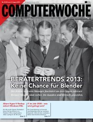 BERATERTRENDS 2013: