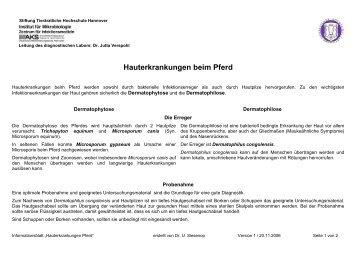 Hauterkrankungen beim Pferd - Tierärztliche Hochschule Hannover