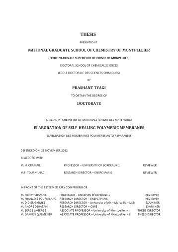 4(%3)3 - Ecole nationale supérieure de chimie de Montpellier