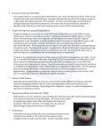 Oral and Maxillofacial Surgery - Gulf Coast Veterinary Specialists - Page 2