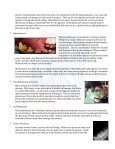 Oral and Maxillofacial Surgery - Gulf Coast Veterinary Specialists - Page 3