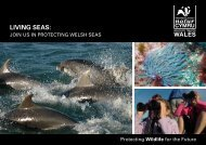 LIVING SEAS: - Gwent Wildlife Trust