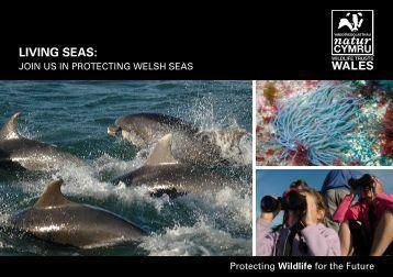 LIVING SEAS: - Gwent Wildlife Trust