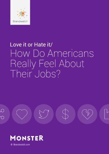 Monster-Job-Report