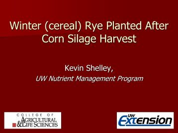 Winter (cereal) Rye Planted After Corn Silage Harvest