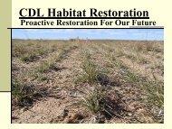 CDL Habitat Restoration