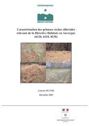 Pelouses sèches alluviales, CBNMC 2005 - Webissimo