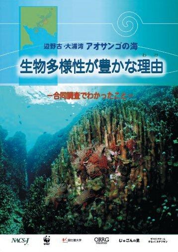 henoko-090423-01-hokoku