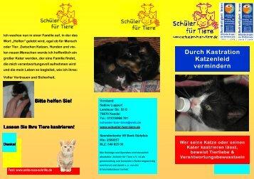 Katzenflyer - Schüler für Tiere