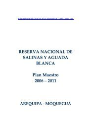 Documento Plan Maestro RNSAB 2006 2011 - Universidad Católica ...