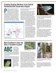 on our National Wildlife Refuges - American Bird Conservancy - Page 6