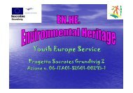 Youth Europe Service