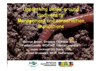 """""""Unearthing"""" below-ground biodiversity"""