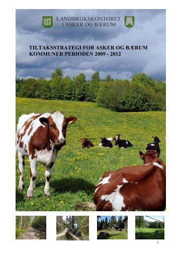 tiltaksstrategi for asker og bærum kommuner perioden 2009 - 2012