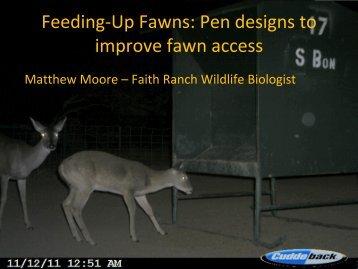 Feeding-Up Fawns - Caesar Kleberg Wildlife Research Institute ...
