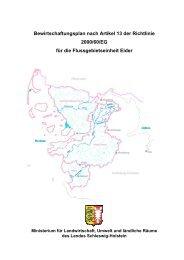 Bewirtschaftungsplan nach Artikel 13 der Richtlinie 2000/60/EG für ...