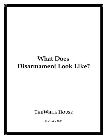 What Does Disarmament Look Like?