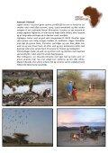 Nigel Archer Safaris Kenya - African Adventure - Page 2
