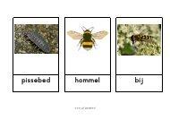 Woordkaarten kriebelbeestjes - Juf Janneke