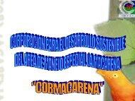 Avances en la Gestión del Sistema Regional ... - ccai-colombia.org