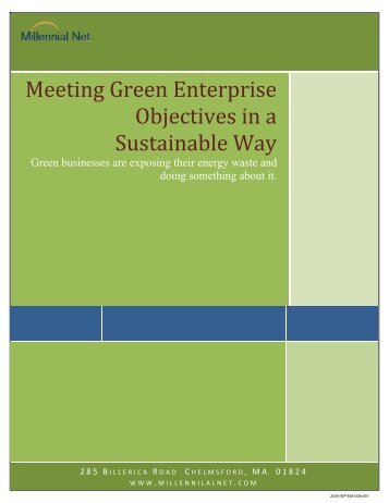 Meeting Green Enterprise Objectives in a ... - Millennial Net