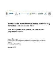 Identificación de las Oportunidades de Mercado y Mercadeo en ...