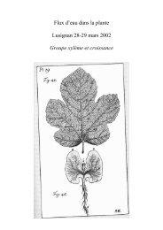 Flux d'eau dans la plante Lusignan 28-29 mars ... - Hervé Cochard