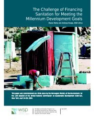 The Challenge of Financing Sanitation for Meeting the ... - WSP