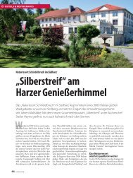 "W ""Silberstreif"" am Harzer Genießerhimmel"