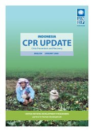Indonesia Crisis and Prevention Recovery Update - UNDP