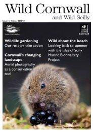 Issue 113 Winter 2010/2011 - Cornwall Wildlife Trust
