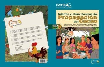 Injertos y otras técnicas de Propagación del Cacao - Pymerural