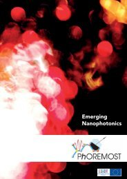 Emerging Nanophotonics - Photonic Crystals Group ICMM