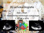 2D echokardiografie